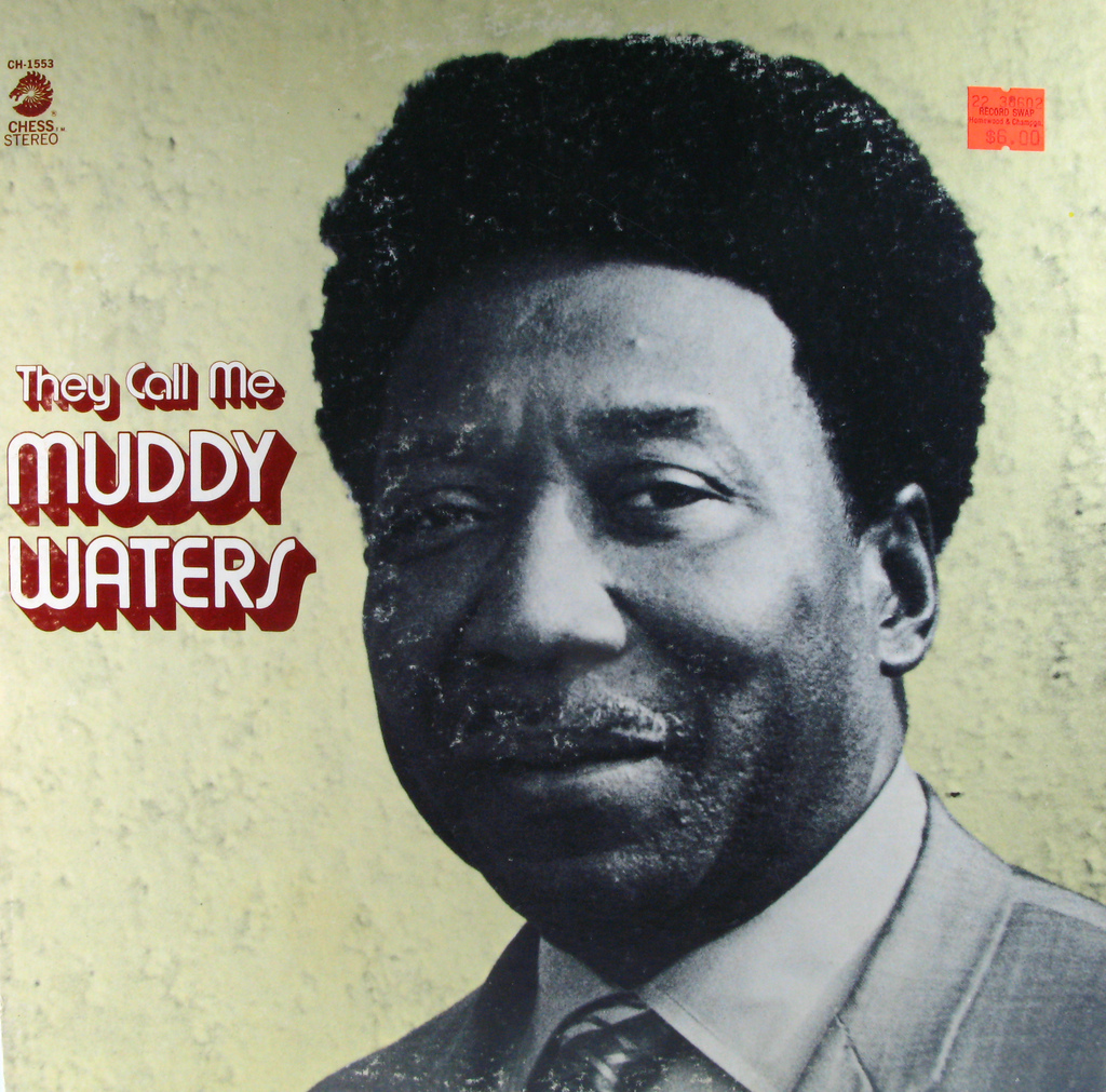 They Call Me Muddy Waters Record