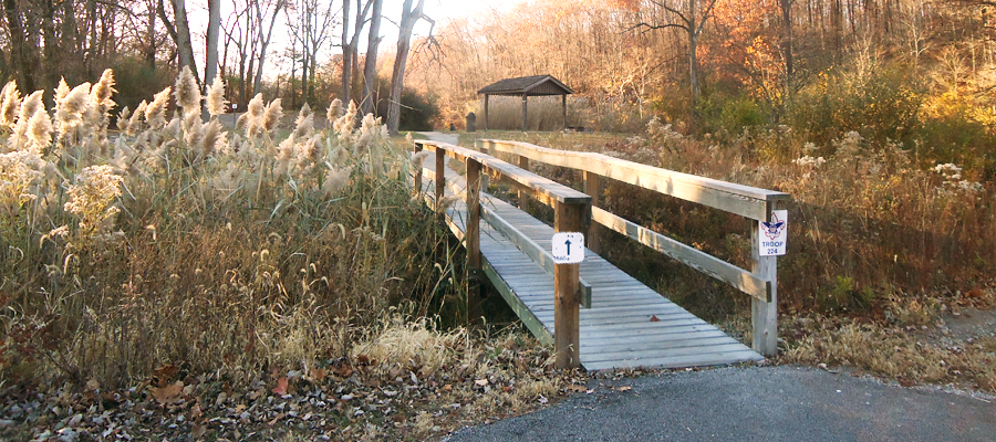 Illinois park of the month: Kickapoo State Recreation Area