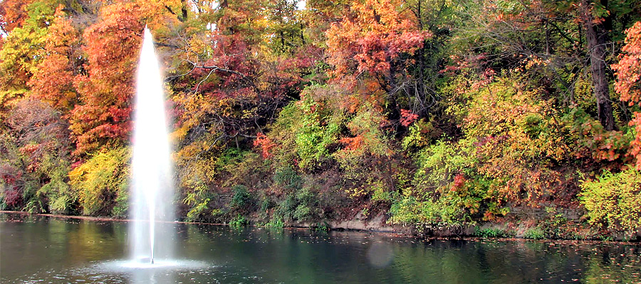 Illinois park of the month: Siloam Springs State Park